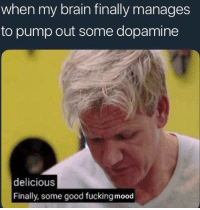 Fucking, Mood, and Brain: when my brain finally manages  to pump out some dopamine  delicious  Finally, some good fucking mood