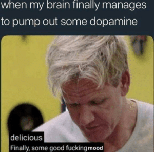 Dank, Fucking, and Memes: when my brain finally manages  to pump out some dopamine  delicious  Finally, some good fucking mood Feels Good by shazan958 MORE MEMES