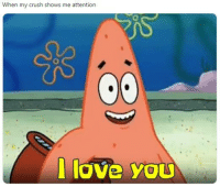 Attention Love: When my crush shows me attention  love You  0