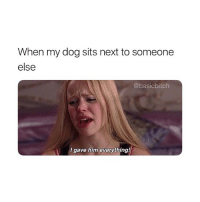 Girl Memes, How, and Dog: When my dog sits next to someone  else  @basicbitch  I gave him everything! HOW COULD YOU 😭