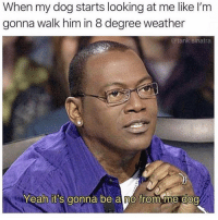Instagram, Memes, and Yeah: When my dog starts looking at me like I'm  gonna walk him in 8 degree weather  @tank.sinatra  Yeah it's gonna be a no from me doo Request @couplesnote for more 18+ sexual memes on instagram😘💦👅