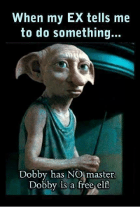 dobby: When my EX tells me  to do something...  Dobby has NO master.  Dobby is a free elf