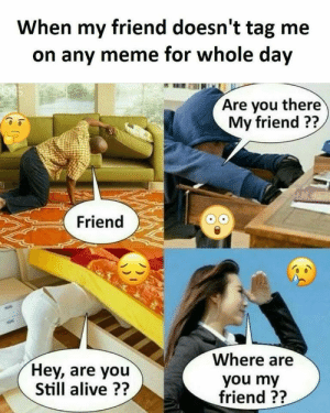 Alive, Dank, and Meme: When my friend doesn't tag me  on any meme for whole day  Are you there  My friend ??  Friend  Where are  Hey, are you  Still alive ??  you my  friend ?? Pretty much by OzziePeck FOLLOW 4 MORE MEMES.