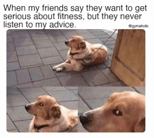 When my friends say they want to get serious about fitness, but they never listen to my advice.  Gymahohlic App: https://www.gymaholic.co  #fitness #meme #motivation #workout #gym #gymaholic: When my friends say they want to get serious about fitness, but they never listen to my advice.  Gymahohlic App: https://www.gymaholic.co  #fitness #meme #motivation #workout #gym #gymaholic