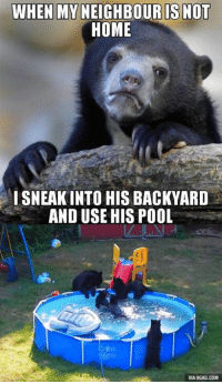Dank, 🤖, and Usings: WHEN MYNEIGHBOUR IS NOT  HOME  SNEAK INTO HISBACKYARD  AND USE HIS POOL  VIA9GAG.COM Confession Bear's confession http://9gag.com/gag/aq2y2mL?ref=fbp