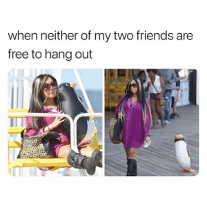 Friends, Relationships, and Free: when neither of my two friends are  free to hang out