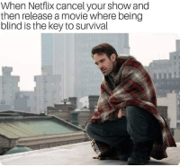 Netflix, Movie, and Dank Memes: When Netflix cancel your show and  then release a movie where being  blind is the key to survival F.