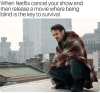 Netflix, Movie, and Key: When Netflix cancel your show and  then release a movie where being  blind is the key to survival Hurts man