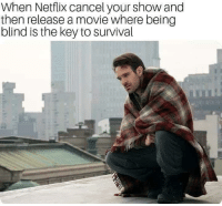 RIP Daredevil: When Netflix cancel your show and  then release a movie where being  blind is the key to survival RIP Daredevil