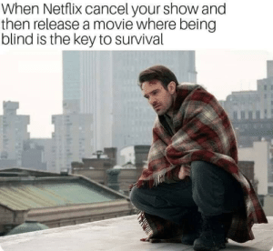 Dank, Memes, and Netflix: When Netflix cancel your show and  then release a movie where being  blind is the key to survival Hurts man by hwanvp MORE MEMES
