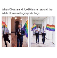 god bless whoever did this: When Obama and Joe Biden ran around the  White House with gay pride flags god bless whoever did this