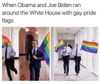 Obama And Joe: When Obama and Joe Biden ran  around the White House with gay pride  flags