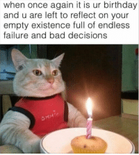 Bad, Birthday, and Cats: when once again it is ur birthday  and u are left to reflect on your  empty existence full of endless  failure and bad decisions And no, they don't appreciate you celebrating it every year. Each and every year.#cats # funny cats # cat memes # birthday memes # animal birthday # animal memes # funny memes