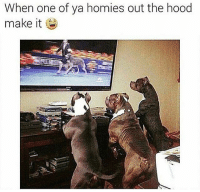 Meme, Memes, and The Hood: When one of ya homies out the hood  make it @DrSmashlove is the BEST dog meme page on the Gram and his captions are hilarious! 😂