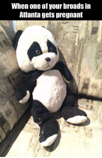 Sad Panda.: When one of your broads in  Atlanta gets pregnant Sad Panda.
