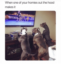 Funny, Lol, and The Hood: When one of your homies out the hood  makes it Lol yeeeet