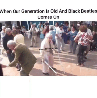 Lmao ayeee turn up lol hoodclips comedy HoodComedy: When our Generation Is Old And Black Beatles  Comes On  Hoodclips.com Lmao ayeee turn up lol hoodclips comedy HoodComedy