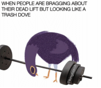😂😂: WHEN PEOPLE ARE BRAGGING ABOUT  THEIR DEAD LIFT BUT LOOKING LIKE A  TRASH DOVE 😂😂