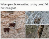 Fall, Goat, and Waiting...: When people are waiting on my down fall  but im a goat