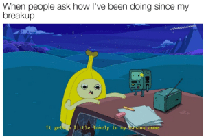 Banana, Dank Memes, and Sad: When people ask how I've been doing since my  breakup  u/ilikebootyholesdally  ..  It gets a little lonely in my banana dome  BMC Sad memer hours