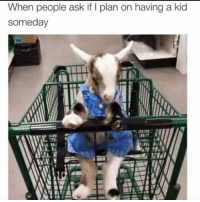 Memes, 🤖, and Ask: When people ask if I plan on having a kid  someday