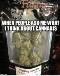 Memes, Nursing, and 🤖: WHEN PEOPLE ASK ME WHAT  ITHINKABOUT CANNABIS  3,5g  indis  ible  Fo  K@#ing incre  22.61%  THc  imgflip.com It really is.... *edit* for all the people nitpicking at the brand, please note that only the name of the strain is important in this meme. And I can't even see the brand except farms... - - Follow our partner page @laureljames1_cannabis_nurse Check out @the_paper_plug thedailypapers hemp cannabis savetrees legalize pot weed indica sativa thc cbd repost 420 drugs drugwar informational science natural essential thc endocannabinoid endocannabinoidsystem cbd ecofriendly angiogensis anticancer marijuana 420friendly medicalmarijuana thepaperplug