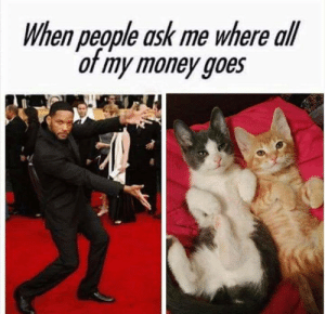 Memes, Money, and 🤖: When people ask me where all  or my money goes  e4