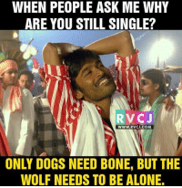 ✌️👌 rvcjinsta: WHEN PEOPLE ASK ME WHY  ARE YOU STILL SINGLE?  RVCJ  WWW. RVCI COM  ONLY DOGS NEED BONE, BUT THE  WOLF NEEDS TO BE ALONE. ✌️👌 rvcjinsta