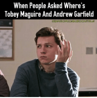 Memes, Tobey Maguire, and Wolverine: When People Asked Where's  Tobey Maguire And Andrew Garfield Are they living under a rock or something? For those who ask, Tobey's career is dead while Andrew is making great films with Silence and Hacksaw Ridge and probably be nominated for an Oscar and might win it. Marvel MarvelCinematicUniverse MCU MarvelMemes Spiderman CaptainAmerica Ironman CivilWar GuardiansOfTheGalaxy BlackWidow Bucky Memes 2016 Avengers Comics AntMan GhostRider Xmen Wolverine BlackPanther Thor Hulk Deadpool Agentsofshield Daredevil Ironfist Lukecage JessicaJones DoctorStrange