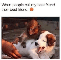 Best Friend, Memes, and Best: When people call my best friend  their best friend.
