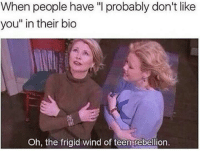 "Rebellion, MeIRL, and Teen: When people have "" probably don't like  you"" in their bio  Oh, the frigid wind of teen rebellion. Meirl"
