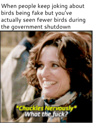 Dank, Fake, and Memes: When people keep joking about  birds being fake but you've  actually seen fewer birds during  the government shutdown  Chuckles Nervously  What the fuck? I think they might be government spies by supercooldude64 MORE MEMES
