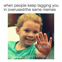 tag those people in the comments.! KingGavin GavinMemes Cute: when people keep tagging you  in over used/the same memes  LEAVE  gay in memes tag those people in the comments.! KingGavin GavinMemes Cute