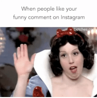 I can't help it that I'm hysterical. Get likes for days by commenting using @capgenius. Download it from the link in the bio!: When people like your  funny comment on Instagram  e betches.c I can't help it that I'm hysterical. Get likes for days by commenting using @capgenius. Download it from the link in the bio!