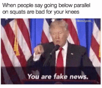 Parallels, Below, and Parallel: When people say going below parallel  on squats are bad for your knees  G:@ass2grass  You are fake news. Don't believe them!
