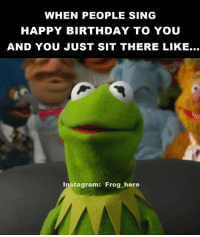 Kermit Meme: WHEN PEOPLE SING  HAPPY BIRTHDAY TO YOU  AND YOU JUST SIT THERE LIKE...  instagram: Frog here