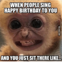 Sent in by @funny_puns_memes ~☔️ meme cleanfunny funny cleanmeme otterfam: WHEN PEOPLE SING  HAPPY BIRTHDAY TO YOU  AND YOUJUST SIT THERE LIKE.. Sent in by @funny_puns_memes ~☔️ meme cleanfunny funny cleanmeme otterfam