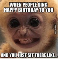 Birthday, Memes, and Happy Birthday: WHEN PEOPLE SING  HAPPY BIRTHDAY TO YOU  AND YOUJUST SIT THERE LIKE... 35 Hilarious Memes #Hilarious #Memes