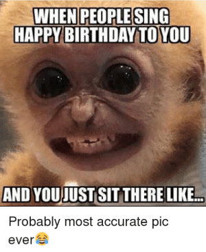 Happy Monkey Meme Birthday: WHEN PEOPLE SING  HAPPY BIRTHDAY TO YOU  AND YOUJUST SIT THERE LIKE...  Probably most accurate pic  ever Happy Monkey Meme Birthday