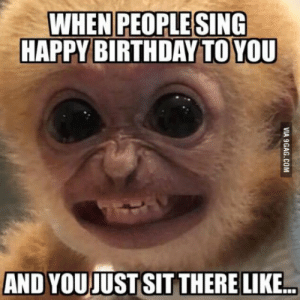 35 Hilarious Memes – Life Quotes & Humor: WHEN PEOPLE SING  HAPPY BIRTHDAY TO YOU  AND YOUJUST SIT THERE LIKE 35 Hilarious Memes – Life Quotes & Humor