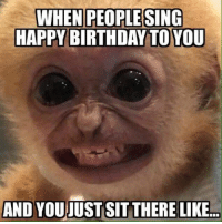 happy birthday meme: WHEN PEOPLE SING  HAPPY BIRTHDAY TO YOU  AND YOUJUSTASIT THERE LIKE