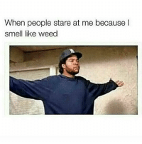 420gang ⛽💨 Bitch what ? You smell like rite aid perfume aisle: When people stare at me because l  smell like weed 420gang ⛽💨 Bitch what ? You smell like rite aid perfume aisle