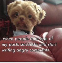 You wot m8?: when people take one of  my posts seriously and start  writing angry comments You wot m8?