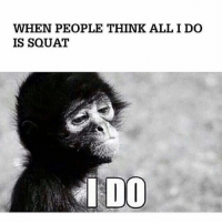 Boxing, Gym, and Squat: WHEN PEOPLE THINK ALL I DO  IS SQUAT  I DOO Still no calves though. 😞 . @DOYOUEVEN - 70% OFF BOXING DAY SALE! 🎉 click the link in our BIO ✔️