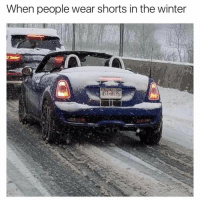 Memes, Ugg, and Uggs: When people wear shorts in the winter Just saw a girl pass by wearing short shorts with ugg boots. @tank.sinatra