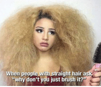"<p>Curly Girl Hair Problems.</p>: When people with straight hair ask  ""why don't you just brush it? <p>Curly Girl Hair Problems.</p>"