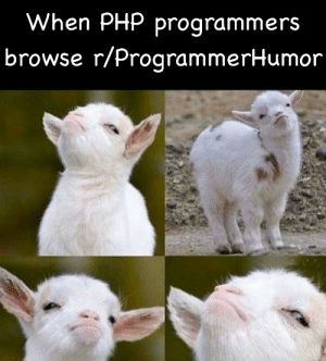Karma, Php, and Show: When PHP programmers  browse r/ProgrammerHumor 'Don't let it show, Eric, not worth losing the karma'