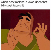 Lmfao: when post malone's voice does that  billy goat type shit Lmfao