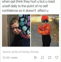 Confidence, Dank, and Roast: when ppl think they hurt u but u roast  urself daily to the point of no self  confidence so it doesn't affect u  Source: perks-of-being-chinese  57,261 notes