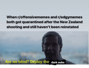 Bruh, Memes, and New Zealand: When r/offensivememes and r/edgymemes  both got quarantined after the New Zealand  shooting and still haven't been reinstated  Are we blind? Deploy the dark  subs Bruh I need my dark and offensive memes back